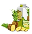 Juice pack pineapple vector