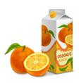 Juice pack orange vector
