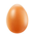 Realistic brown egg vector