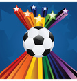 Soccer ball with stars7 vector