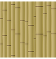 Abstract bamboo background eps10 vector
