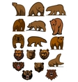 Grizzly or brown bear characters set vector