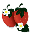 Two ripe red strawberries vector