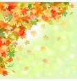 Autumn leaf fall vector