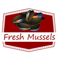 Fresh mussels vector