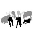 Sheep family vector