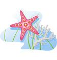 Underwater starfish coral algae vector