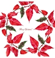 Background with red poinsettia3-07 vector