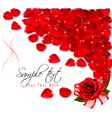Background of red rose petals vector