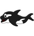 Killer whale vector
