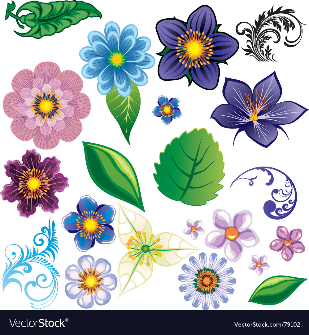 Flower elements vector | Price: 1 Credit (USD $1)