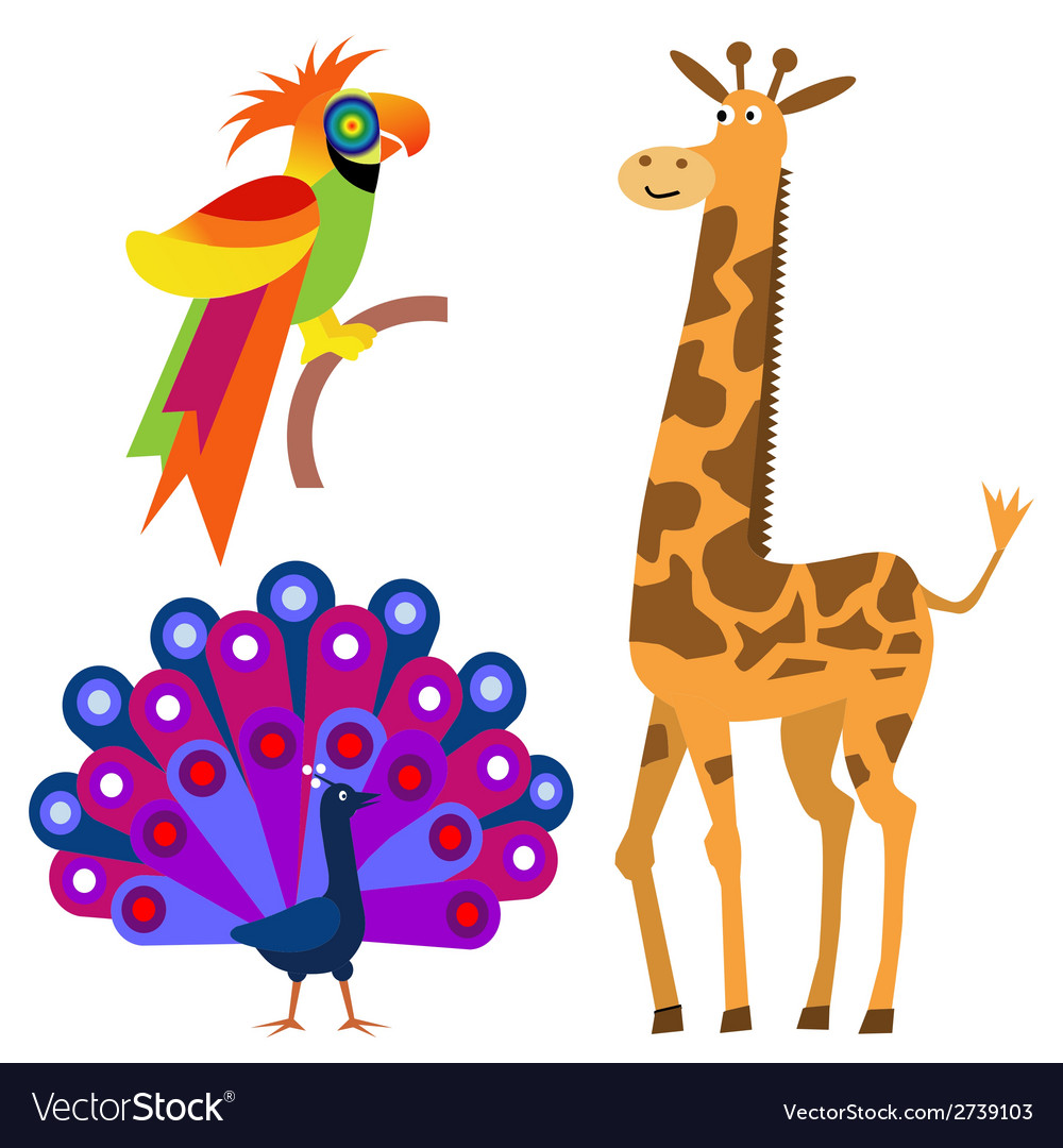 Exotic animals vector | Price: 1 Credit (USD $1)