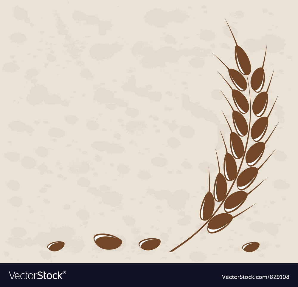 Ear of wheat vector   Price: 1 Credit (USD $1)