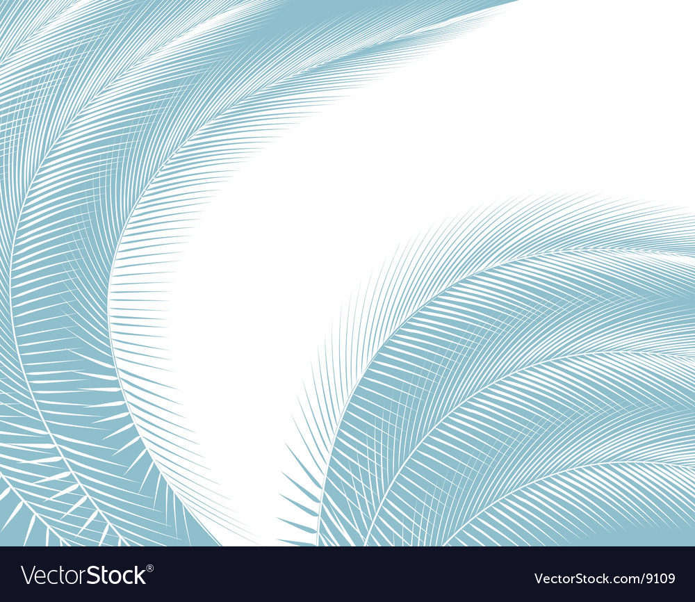 Bending feathers vector | Price: 1 Credit (USD $1)