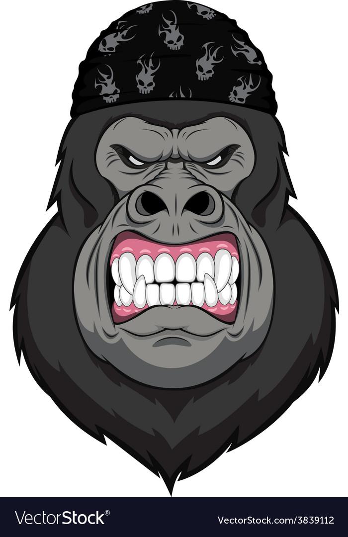 Monkey biker vector | Price: 3 Credit (USD $3)