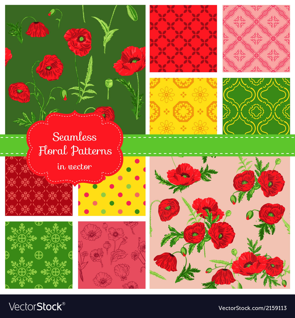 Floral seamless patterns - poppy theme vector | Price: 1 Credit (USD $1)
