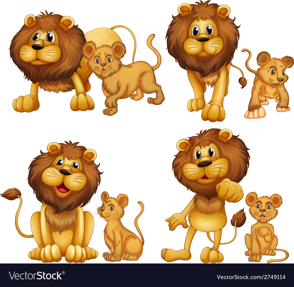 Lion set vector | Price: 1 Credit (USD $1)
