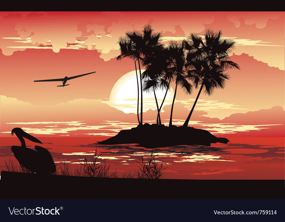 Tropical sunset vector | Price: 3 Credit (USD $3)