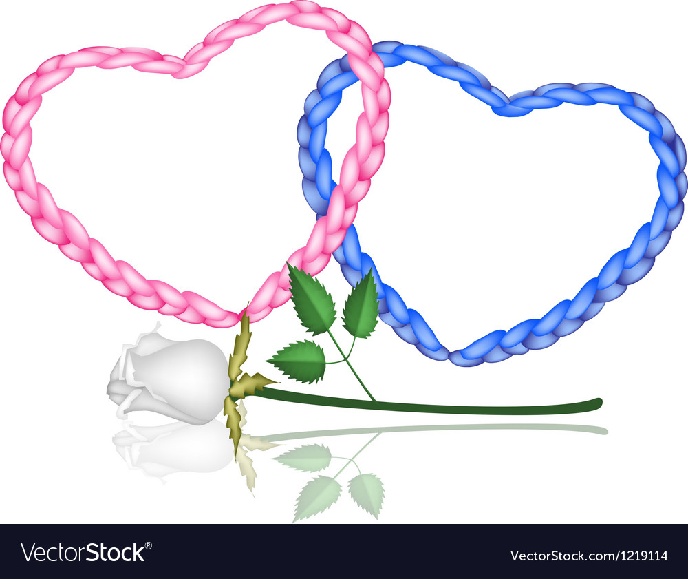 Two rope heart with a white rose vector | Price: 1 Credit (USD $1)
