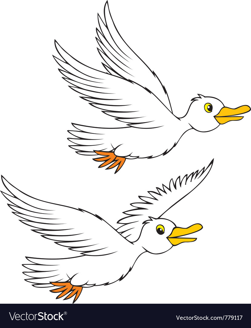 Sea gulls vector | Price: 1 Credit (USD $1)