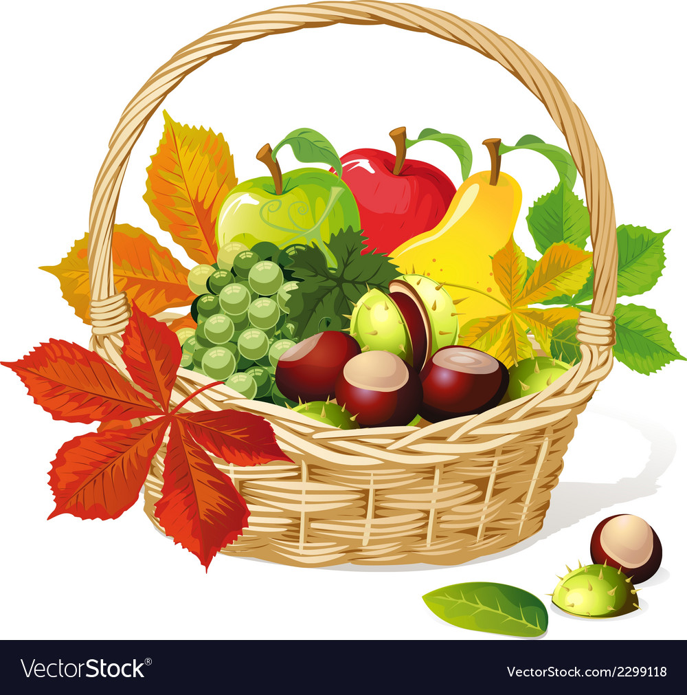 Basket with autumn fruit and vegetables vector | Price: 1 Credit (USD $1)