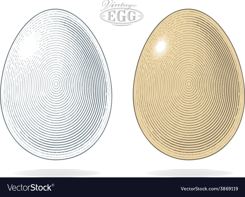 Egg in vintage engraved style vector | Price: 1 Credit (USD $1)
