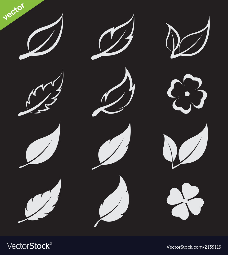 Leaves icon set vector | Price: 1 Credit (USD $1)