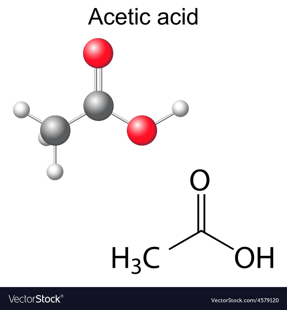 Formula and model of acetic acid molecule vector | Price: 1 Credit (USD $1)