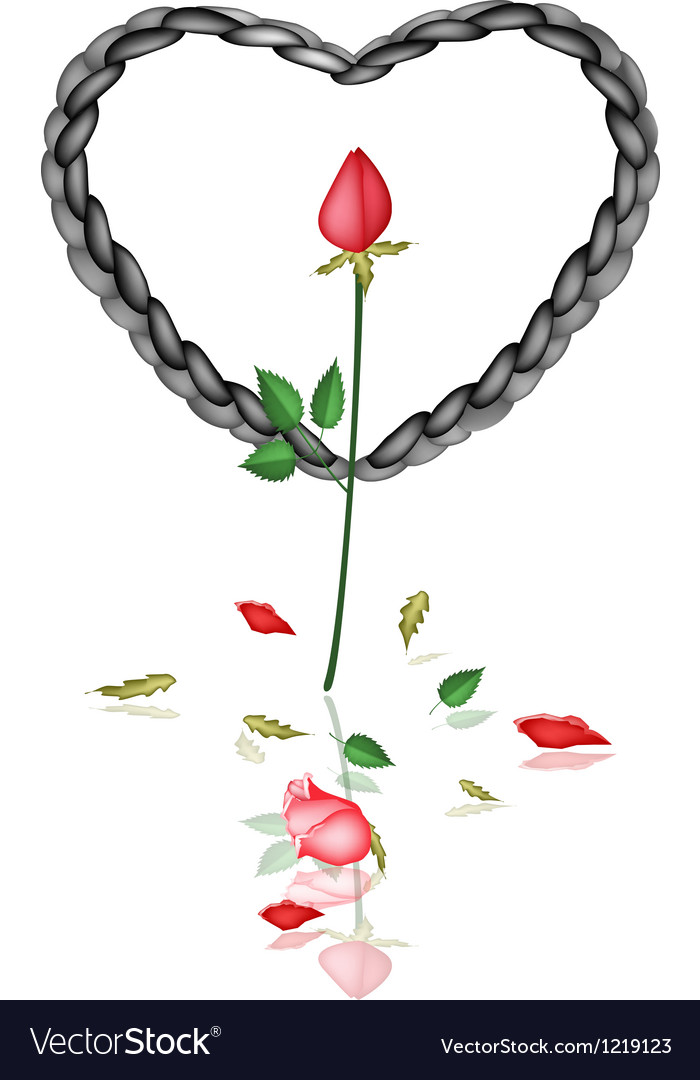 A black rope heart with red roses vector | Price: 1 Credit (USD $1)
