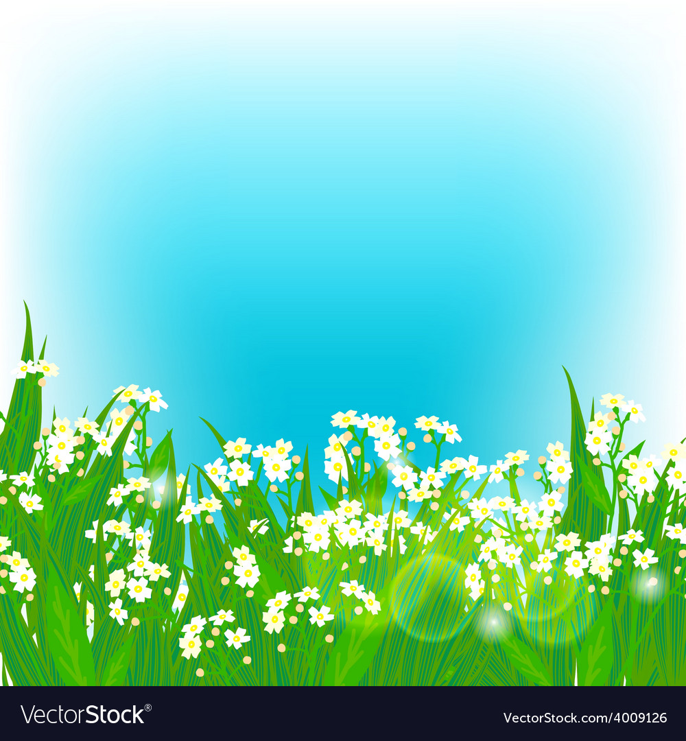 Card with small white flowers vector | Price: 1 Credit (USD $1)