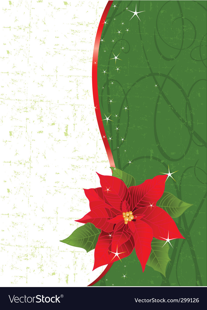 Poinsettia place card vector | Price: 1 Credit (USD $1)