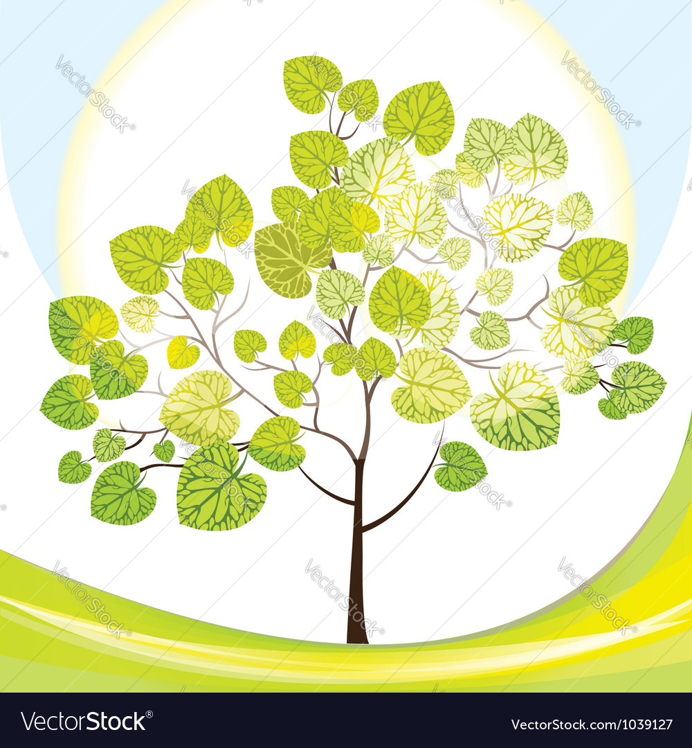 Tree with green leaves sunny day vector | Price: 1 Credit (USD $1)