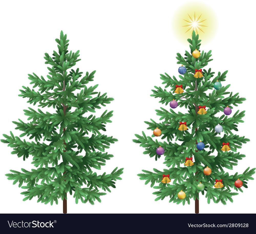 Christmas spruce fir trees with ornaments vector | Price: 1 Credit (USD $1)