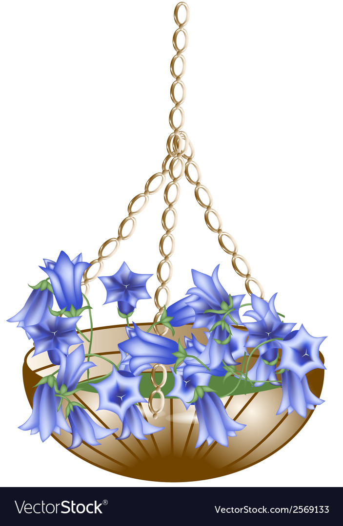 Hanging basket vector | Price: 1 Credit (USD $1)