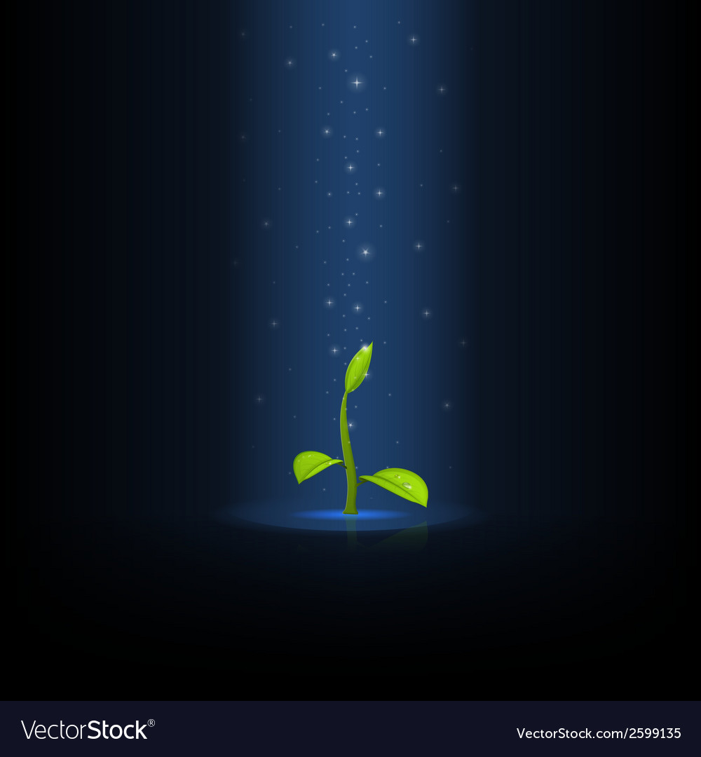 Growing sprout copy vector | Price: 1 Credit (USD $1)