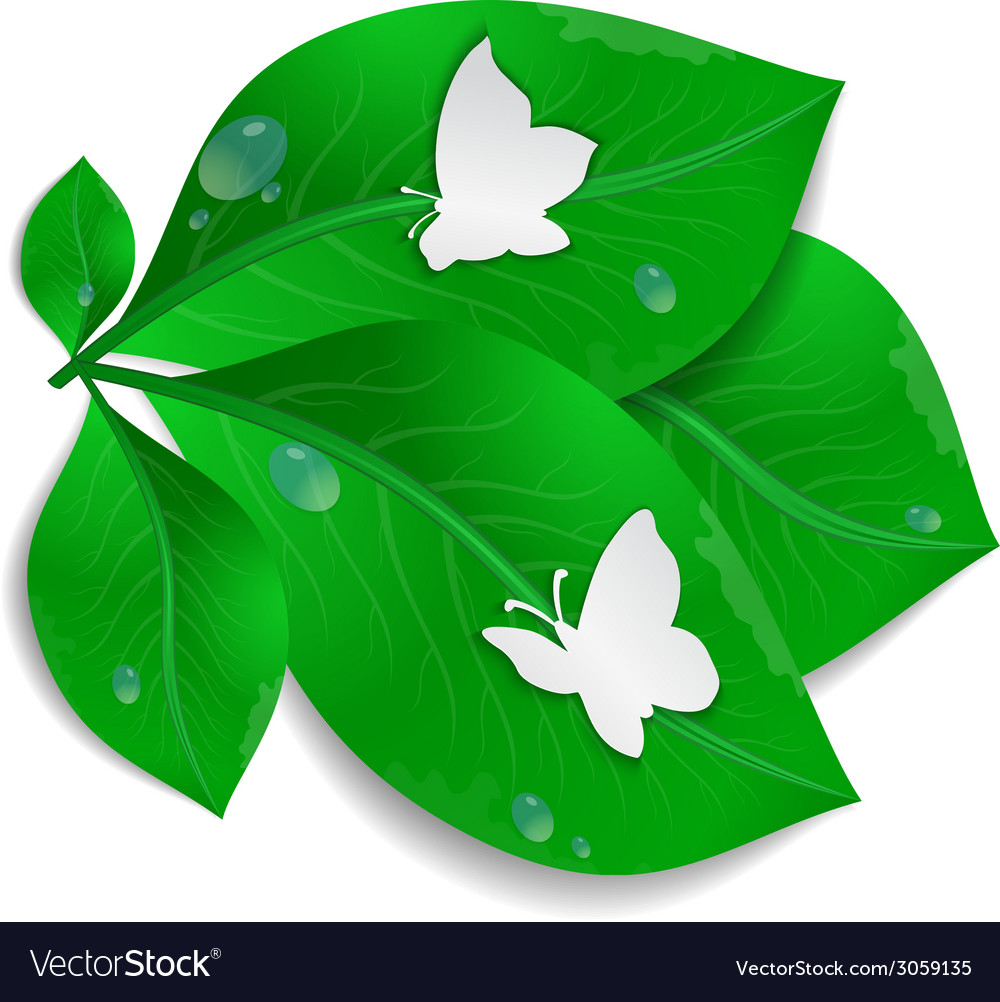 Paper butterflies and green leaves vector | Price: 1 Credit (USD $1)