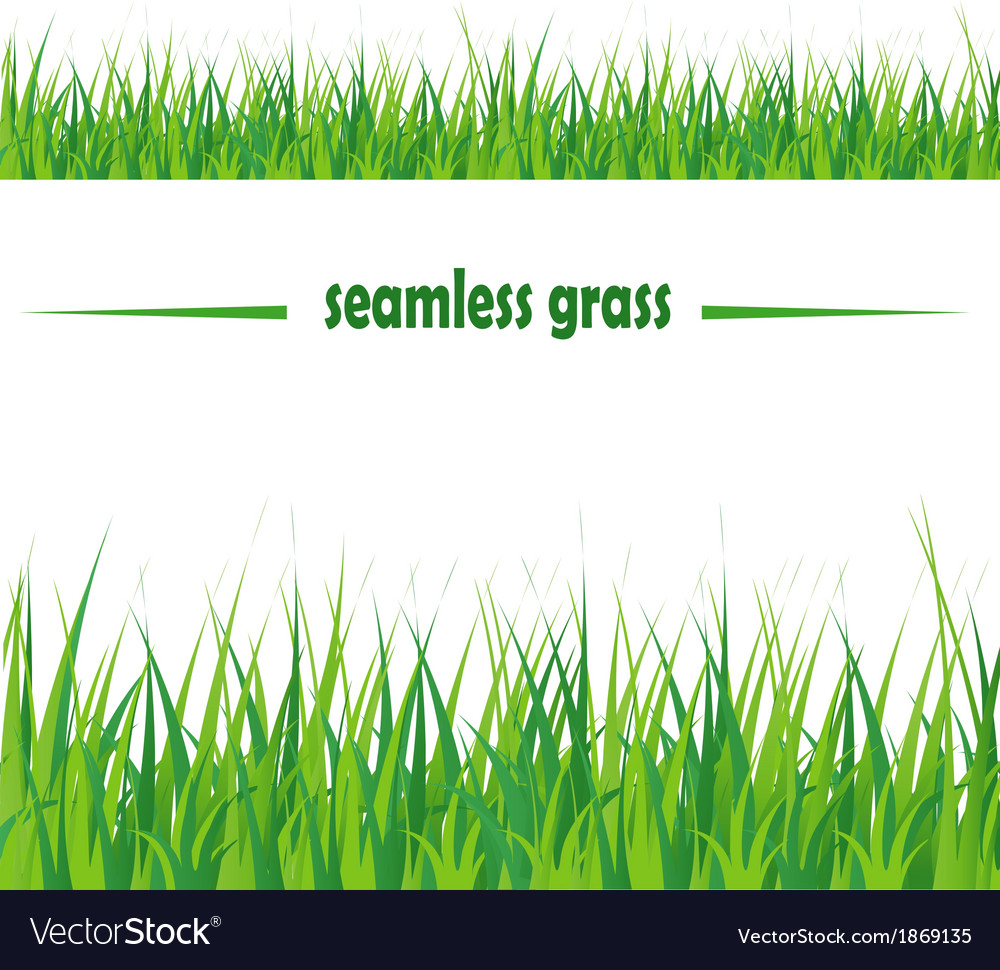 Seamless grass vector | Price: 1 Credit (USD $1)