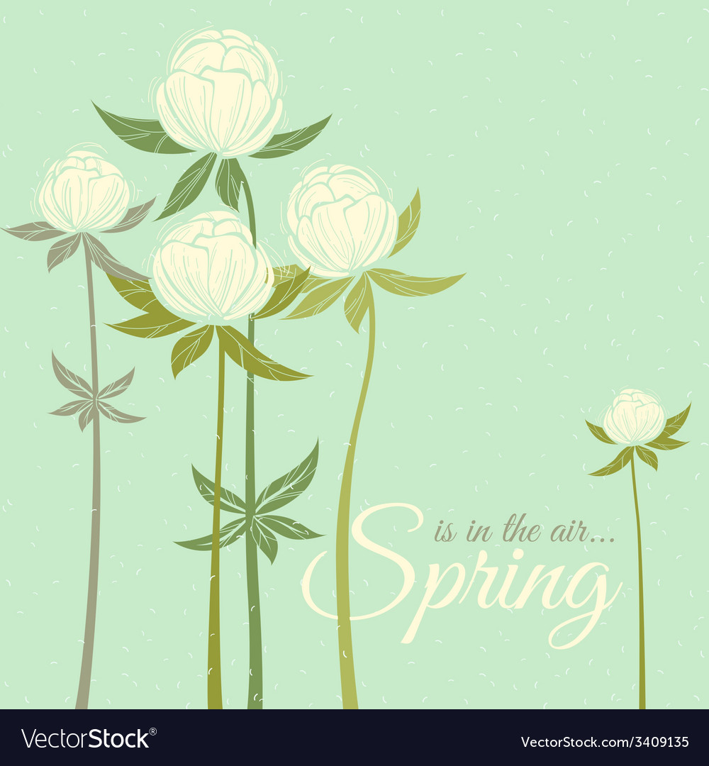 Spring wildflowers vector | Price: 1 Credit (USD $1)