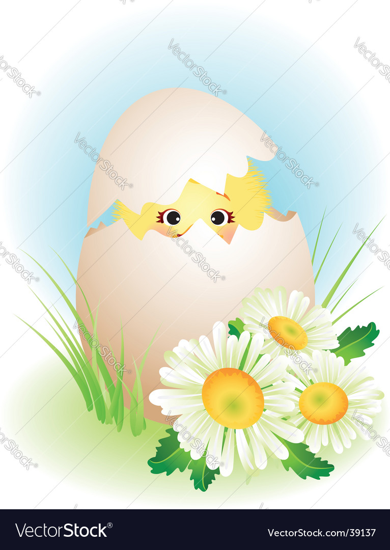Chick vector | Price: 1 Credit (USD $1)