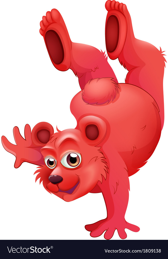 A red bear doing a handstand vector | Price: 1 Credit (USD $1)
