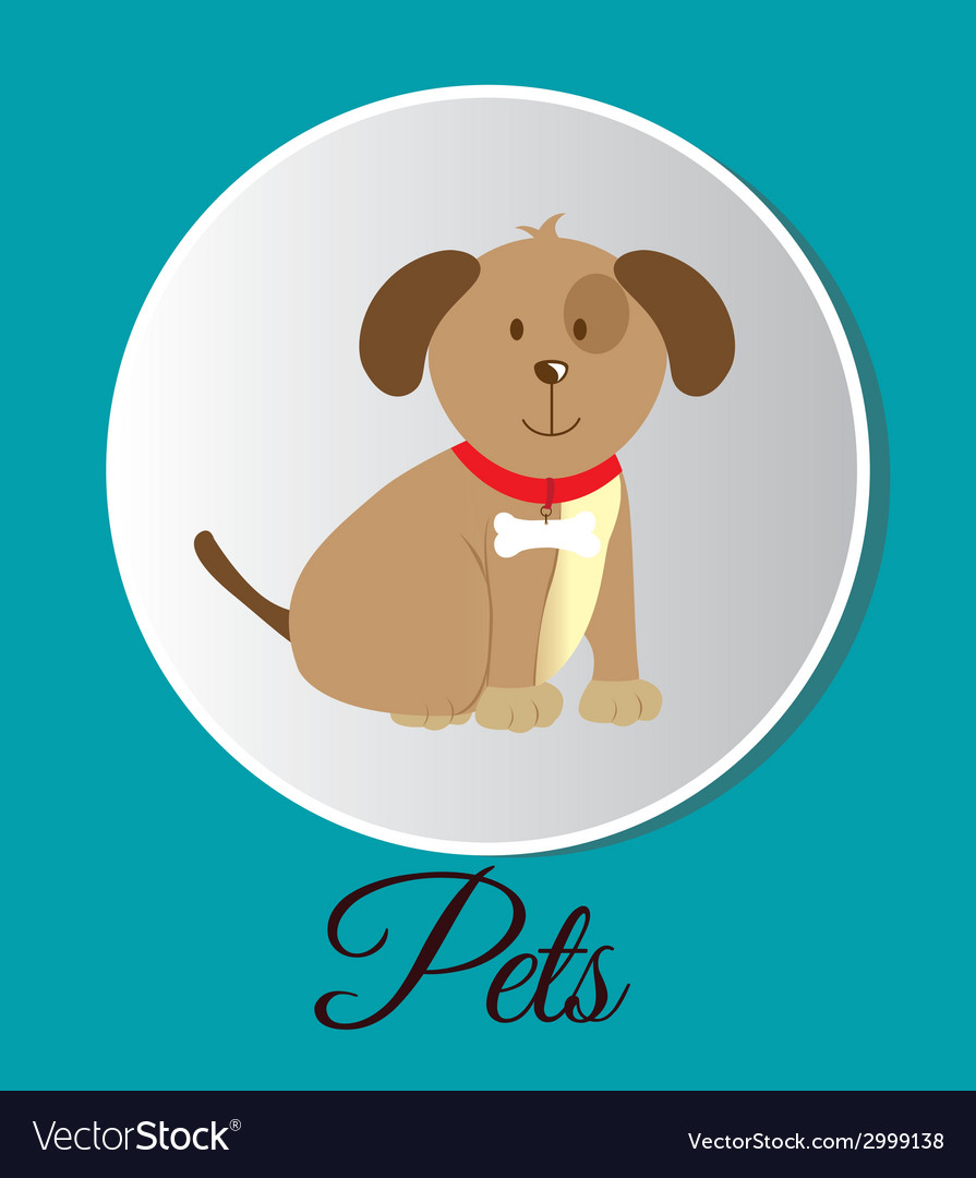 Pets design vector | Price: 1 Credit (USD $1)