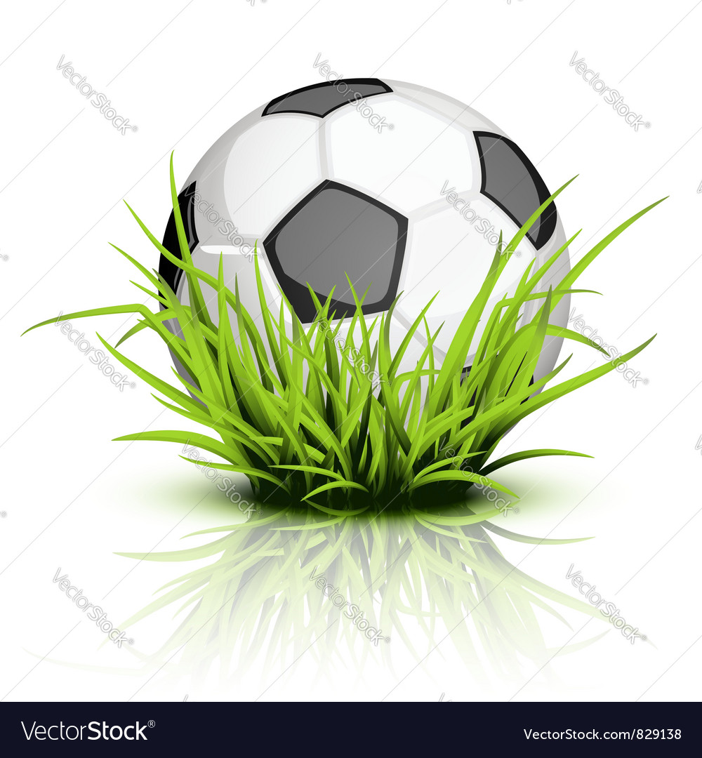 Soccer ball grass vector | Price: 1 Credit (USD $1)