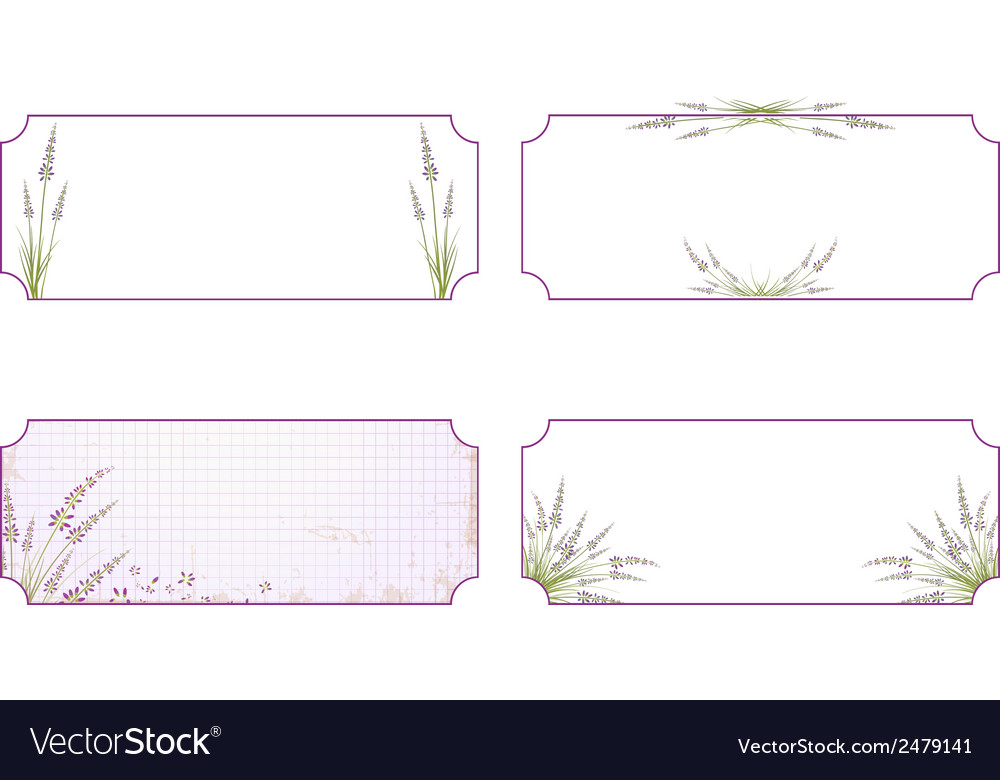 Lavender flower label collection vector | Price: 1 Credit (USD $1)