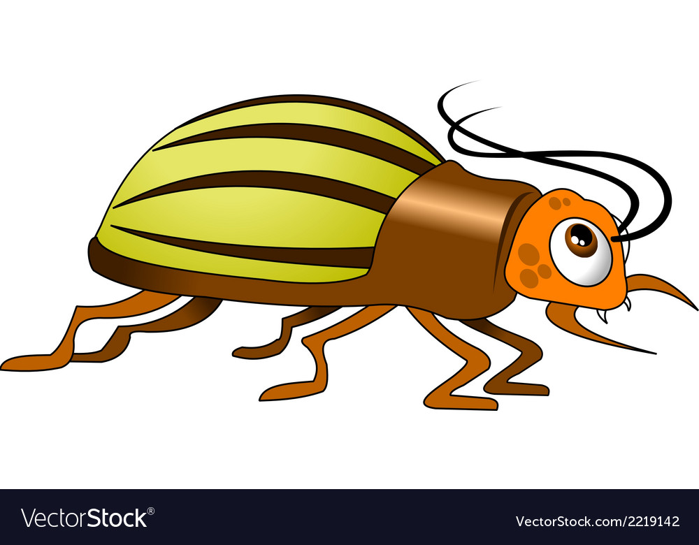 Beetle cartoon vector | Price: 1 Credit (USD $1)