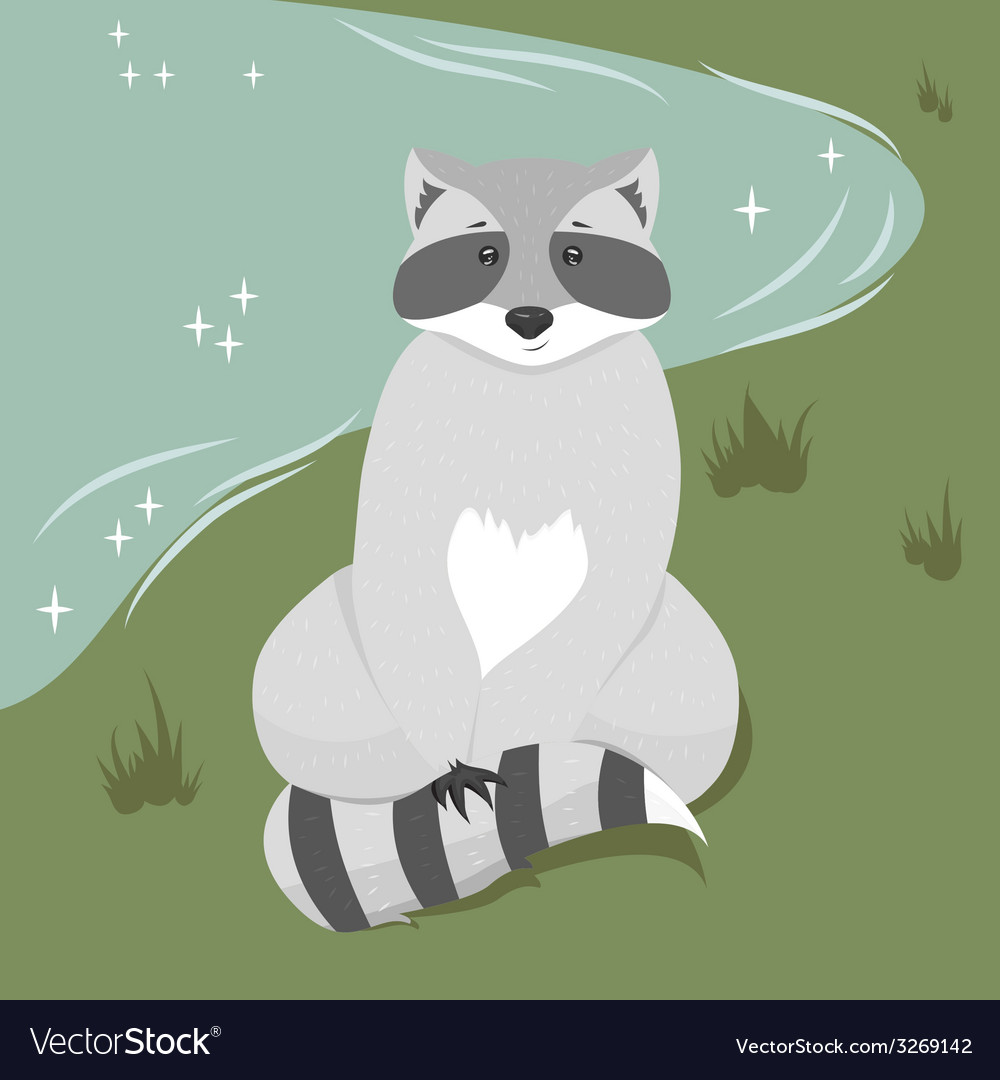 Cute sitting raccoon vector | Price: 1 Credit (USD $1)