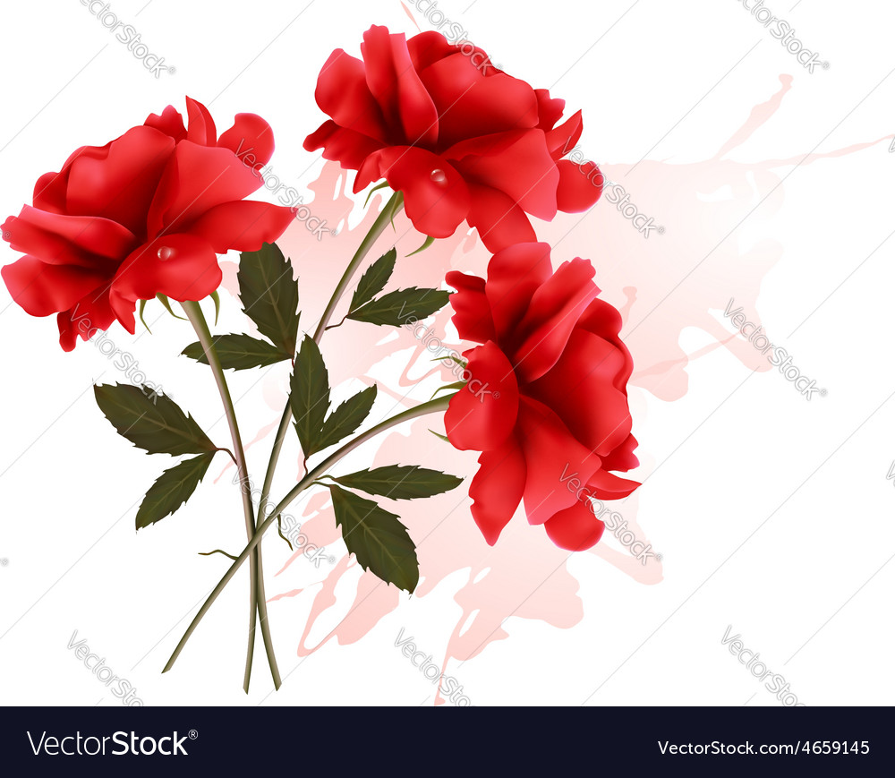 Holiday background with three red roses vector