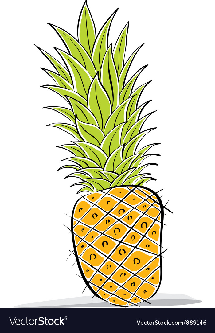 Pineapple drawing vector | Price: 1 Credit (USD $1)