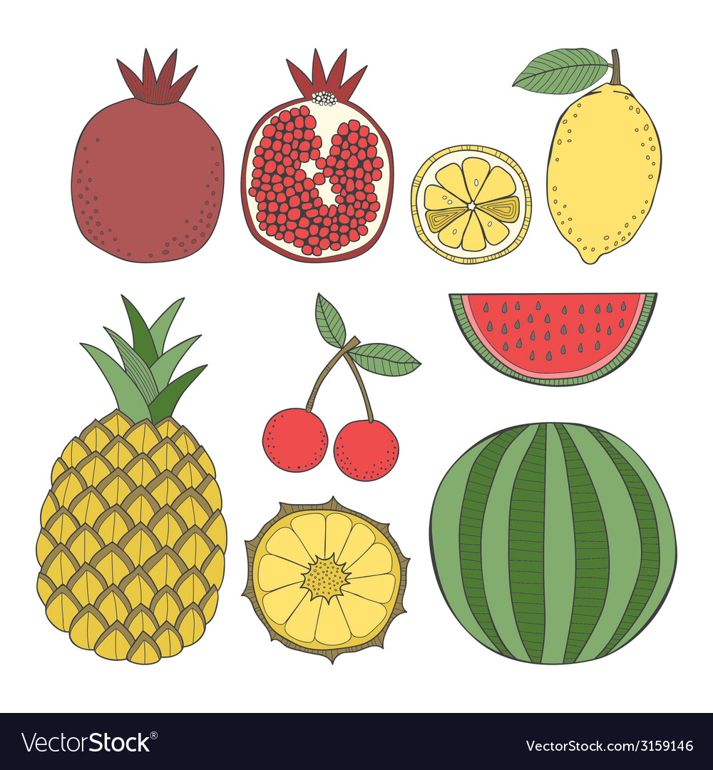 Set of fruit vector | Price: 1 Credit (USD $1)
