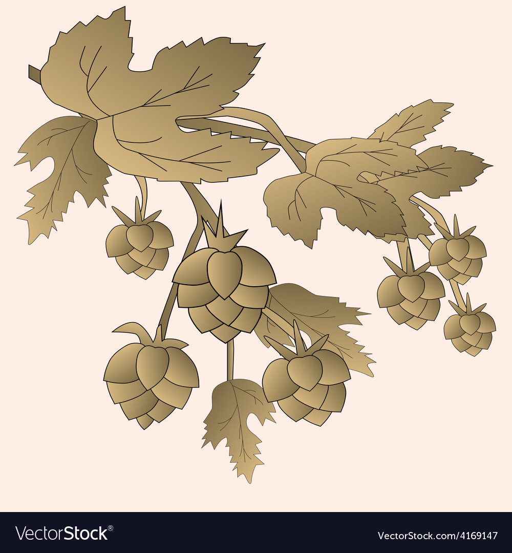 Brown cones and foliage on a pink background vector | Price: 1 Credit (USD $1)