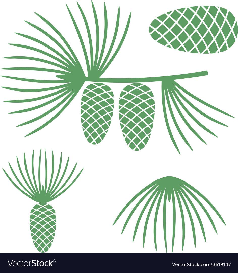Pine vector   Price: 1 Credit (USD $1)
